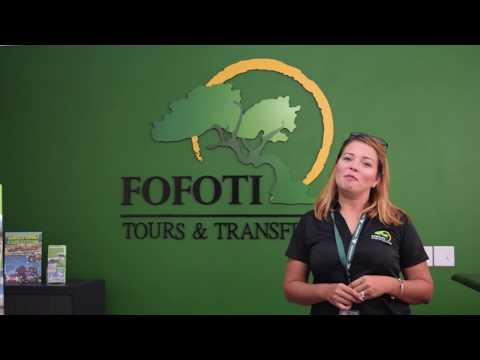 Fofoti Tours Aruba Groups logistics