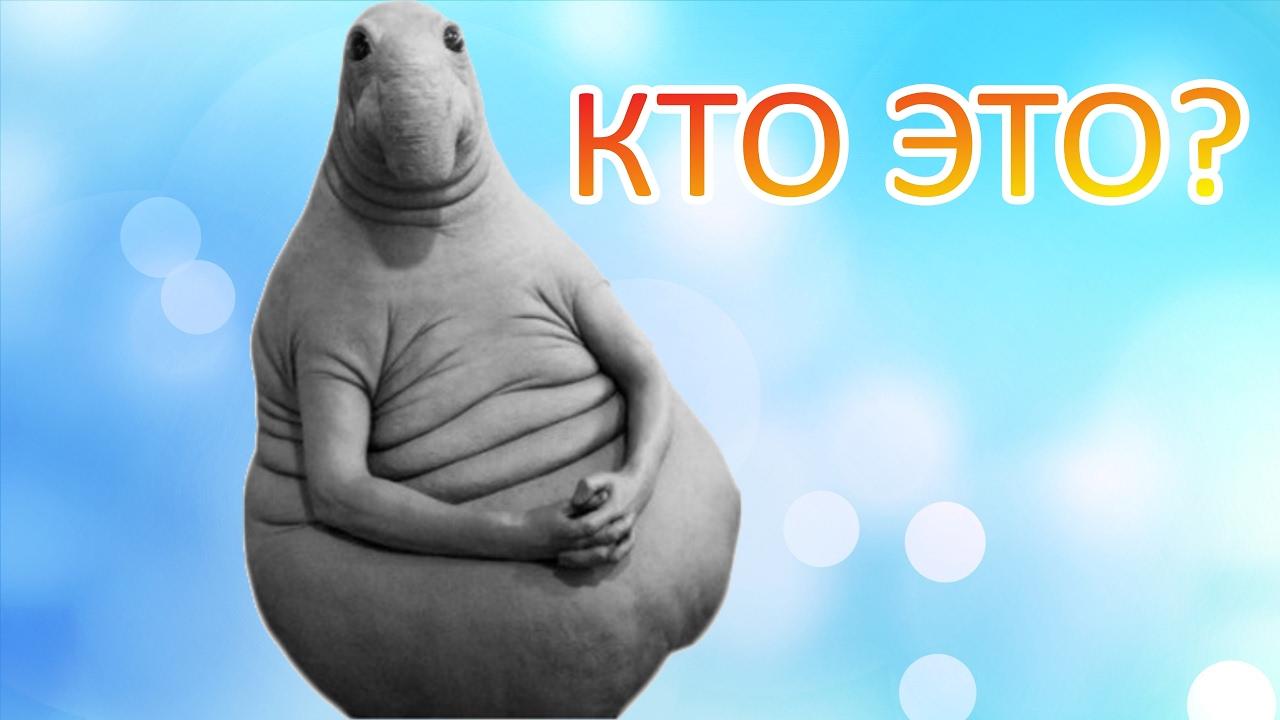 chto-vi-chuvstvuete-kogda-konchaete