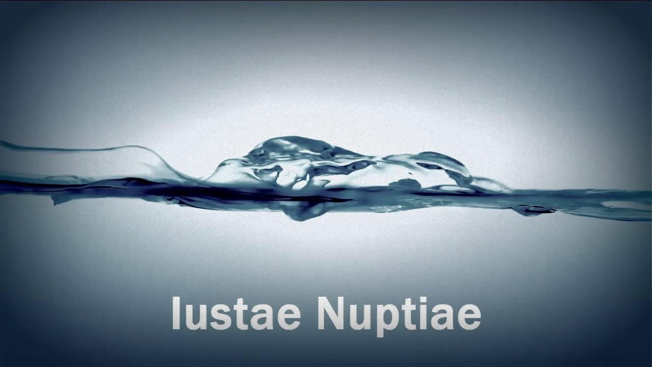 Matrimonio Romano Iustae Nuptiae : Copia de matrimonio romano iustiae nuptiae youtube