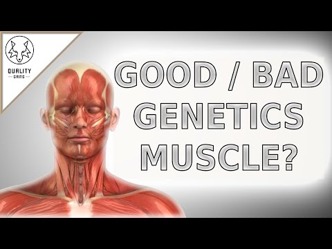 GENETICS AND BUILDING MUSCLE