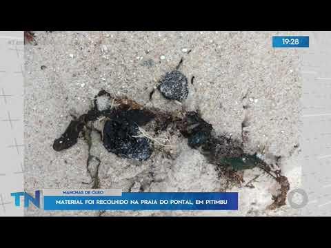 Tambaú Notícias - Material foi recolhido na Praia do Pontal em Pitimbu