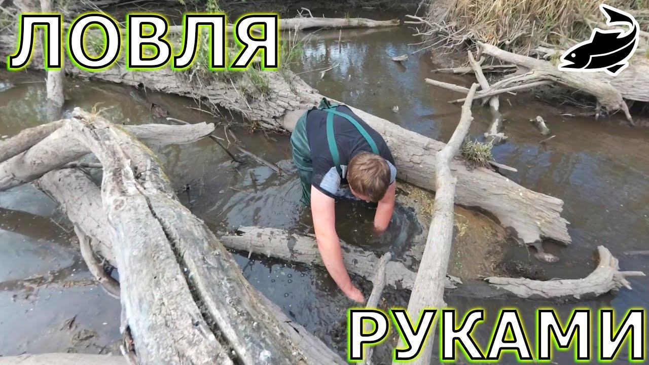 Ловля рыбы руками - руководство к действию