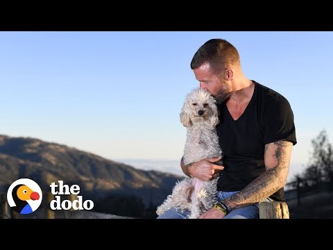 Rescue Pup Turns A Setback Into The Best Thing About Her | The Dodo