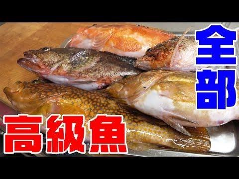 高級魚4種を使って「強烈なチラシ寿司」作ってみた
