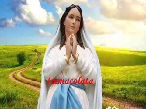 Immacolata Vergine Bella - Realizzazione video: Gabriella Di Carlo