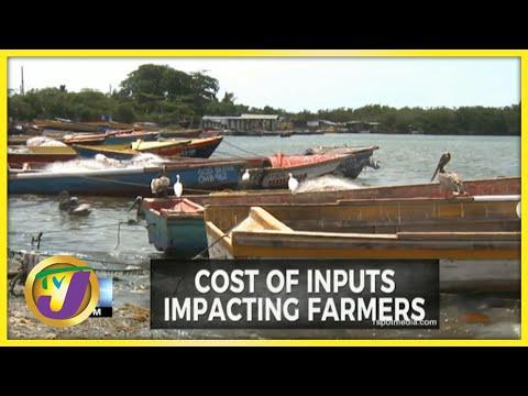 Fisherfolk Lament High Cost of Inputs | TVJ Business - July 13 2021