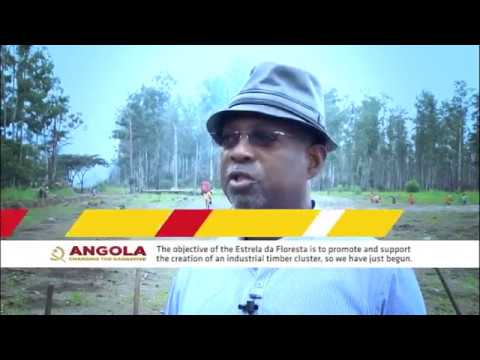 Understanding the Fundo Soberano de Angola fund