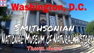 Washington, D.C. - National Museum of Natural History (TRAVEL GUIDE) | Episode# 12