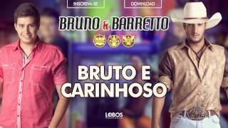 Baixar Bruno e Barretto - Bruto e Carinhoso (CD Farra, Pinga e Foguete 2015)