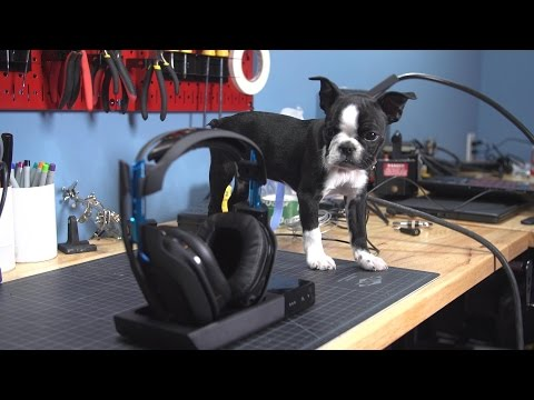 Show and Tell: Astro A50 Wireless Gaming Headset