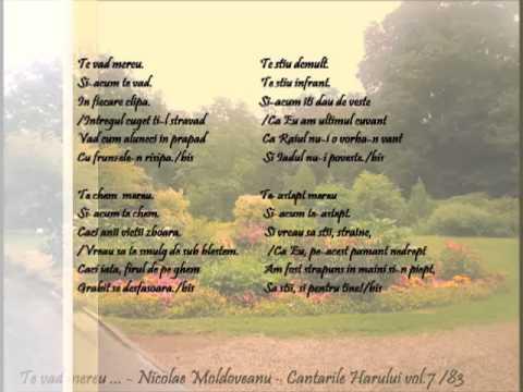 Download Te vad mereu - Tania Pintilie