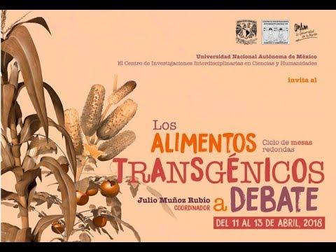 Los alimentos transgénicos a debate