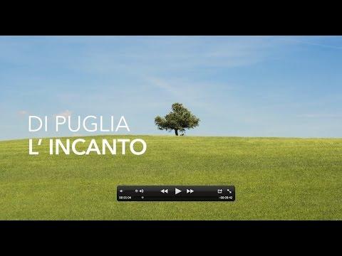 Puglia Sveva - Introduzione, Vini Doc Castel del Monte e Olio Dop Terra di Bari