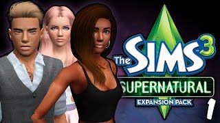 Sims 3 || Let
