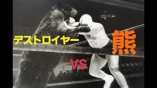 『永眠』デストロイヤー-VS 『冬眠』熊