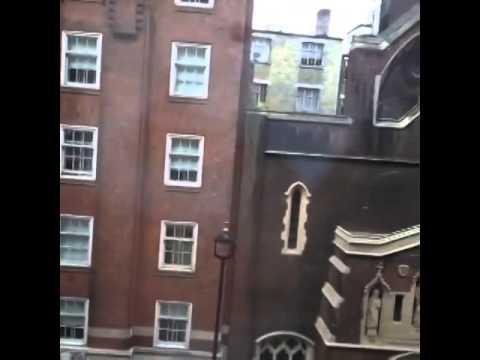 Memeli Mestan Vine Londra'dan bıktım dönmek istiyorum August 9, 2013