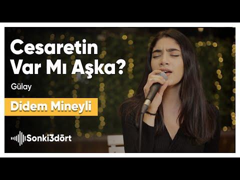 Cesaretin Var Mı Aşka (Gülay   Akustik Cover) Didem Mineyli