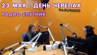 Всемирный день черепах - 23 мая на радио 'Спутник'