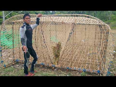 John Rey Hinaut Explains Bubu (Fish Trap) @ Enrique Villanueva, Siquijor 2018