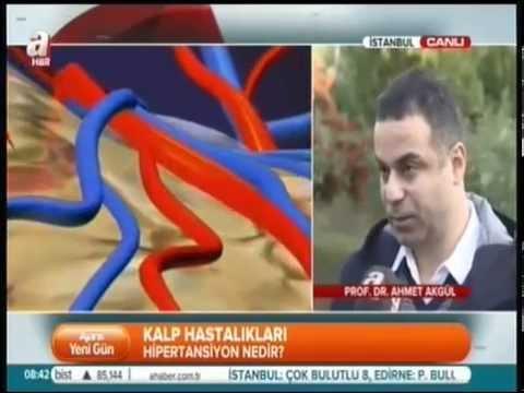 Prof. Dr. Ahmet AKGÜL - Kalp Damar Tansiyon - Hipertansiyon nedir ?
