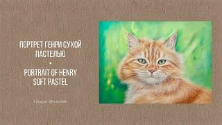 Правда, что рыжие коты приносят счастье? :)