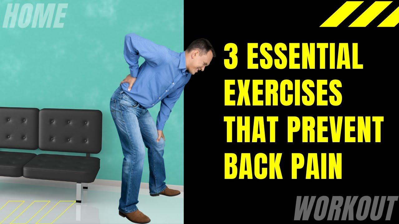 3 Essential Exercises That Prevent Back Pain