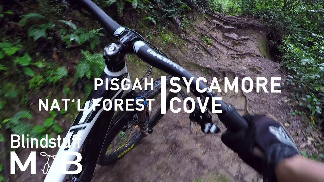 2f2235362dc Mountain Biking Sycamore Cove in Pisgah, NC   As challenging as a blue  warm-up loop gets