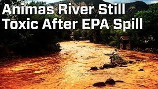 Animas River Still Toxic After EPA Spill