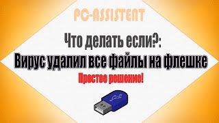 Смотреть видео удалил с флэшки файлы
