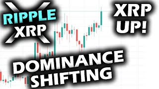 SURPRISE SURGE From Ripple XRP PRICE CHART While Bitcoin Dominance FALLS
