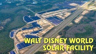 Walt Disney World's Massive 270-Acre Solar Facility