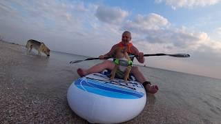 С собакой на море. Отдых дикарём. Крым. часть 2