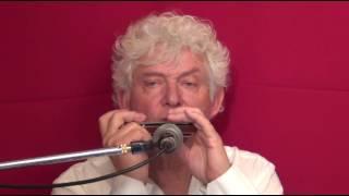 Tims Tiny Tunes #231   Harmonica play-along lessons   Jazz harmonica licks (lr)