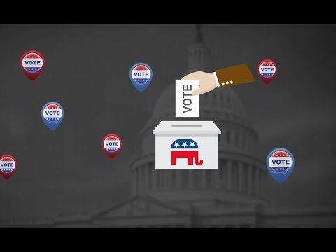 What are the US midterm elections?