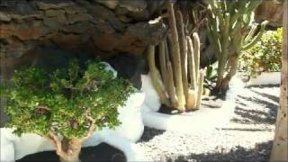 Amazing home in the rock - César Manrique - LANZAROTE Full HD (Ambient Chill)