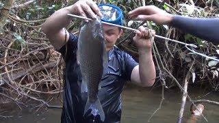 Pescando peces muy grandes con Arpon / Un buen día de pesca.