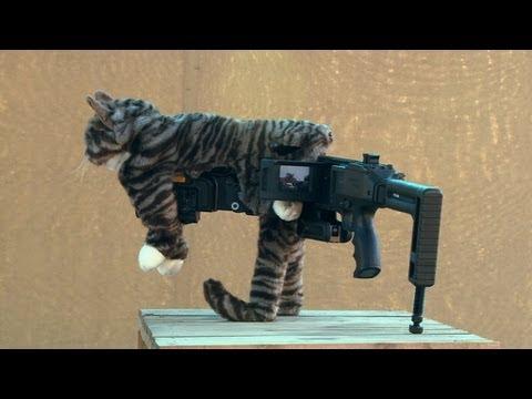 Gun Up Pussy 8