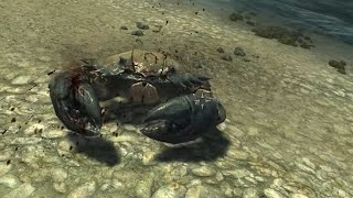 Enderal: Skyrim Mod Playthrough Part 6 - Beach Treasure Hunt