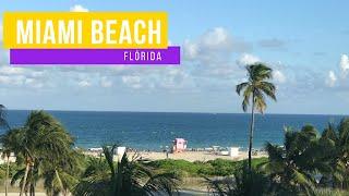 8f7c3ba91b0 MIAMI BEACH - OUTLET SAWGRASS MILLS + ROLÊ DE CONVERSÍVEL NA OCEAN DRIVE ...