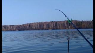 РЫБАЛКА НА ФИДЕР В МАЕ Рыбка просыпается Рыбалка на фидер на утренней зорьке