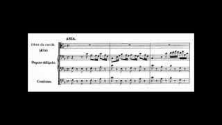 "[Aria] ""Gott hat alles wohlgemacht!"" BWV 35 - Johann Sebastian Bach"