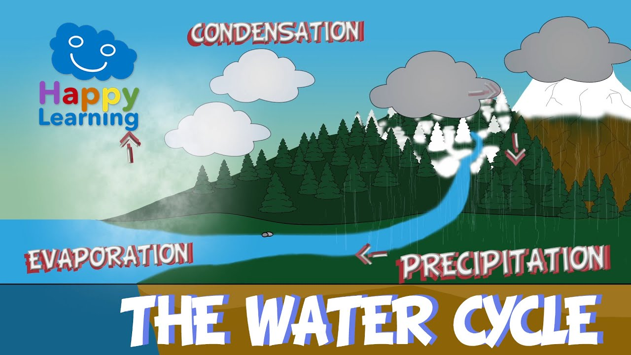 hight resolution of the water cycle educational video for kids