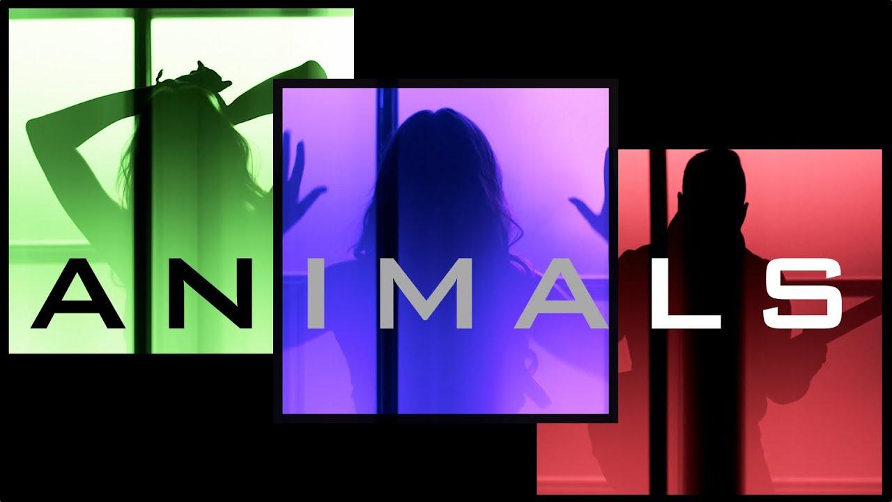 Lyrics to animals adam levine - Animals Maroon 5 Ali Brustofski Popgun Cover Music Video Youtube