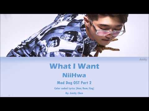 NiiHWA (니화) - What I Want (Mad Dog OST Part 2) [Color Coded Han|Rom|Eng Lyrics]