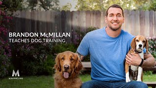 Brandon McMillan Teaches Dog Training | Official Trailer | MasterClass