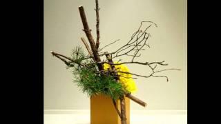 Ikebana by nordiclotus.com
