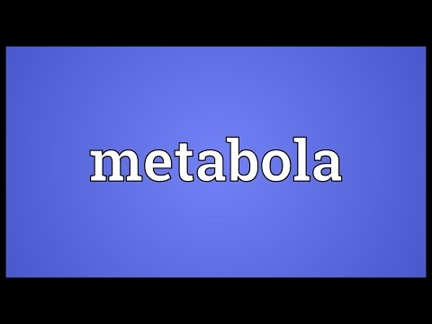 Metabola Meaning