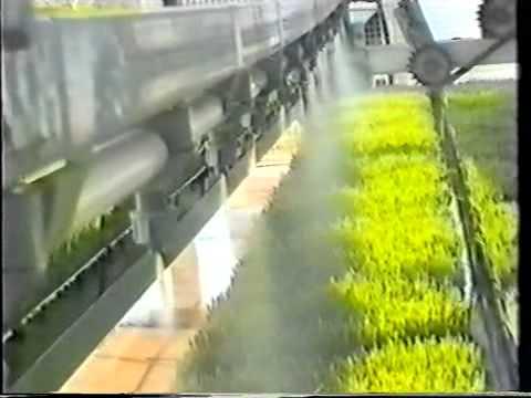 Vertical farming: 60 sq meters producing 2000kg fodder a week
