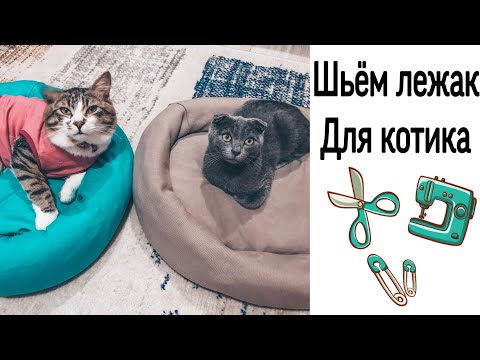 Лежанка для кота своими руками видео