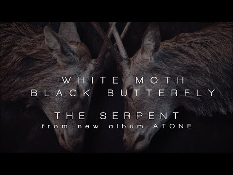 White Moth Black Butterfly - The Serpent (from Atone)